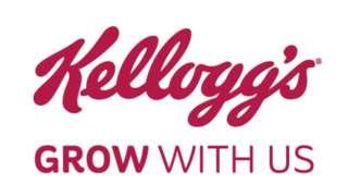 KELLOGG EUROPEAN SERVICES SUPPORT SRL