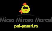 SC Micsa Mircea Marcel SRL