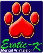 Locuri de munca la Sc. Exotic-K Srl.