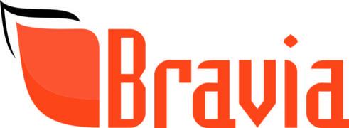 Locuri de munca la Bravia Group