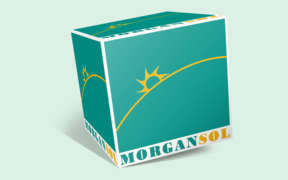 Morgan Sol SRL