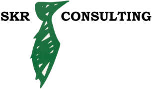 Job offers, jobs at S.C. SKR ROMANIA TRADE AND CONSULTING CO. S.R.L.