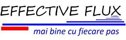 Stellenangebote, Stellen bei EFFECTIVE FLUX SRL