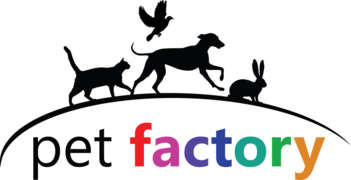Job offers, jobs at SC PET FACTORY SRL