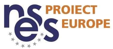 Locuri de munca la NESS PROIECT EUROPE