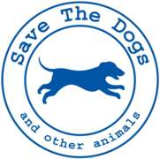 Locuri de munca la Asociatia Save the Dogs and other Animals
