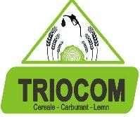 Locuri de munca la Triocom SRL