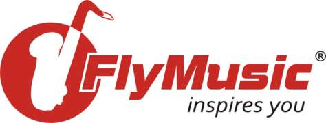 Locuri de munca la Fly Music SRL