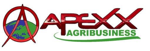 Stellenangebote, Stellen bei APEXX