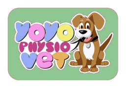 Job offers, jobs at Yoyo Physio Vet SRL