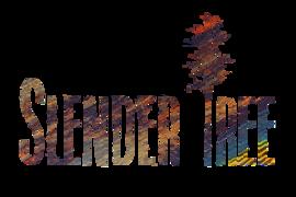 Locuri de munca la Slender Tree SRL