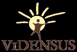 Stellenangebote, Stellen bei Vidensus GmbH