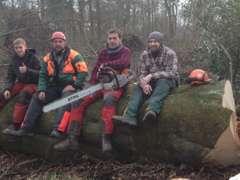 Offres d'emploi, postes chez Garten und Wandforstbau Breithaupt-Heynen