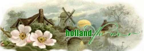Locuri de munca la HOLLAND FLOWER