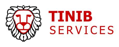 Offres d'emploi, postes chez Tinib Services SRL