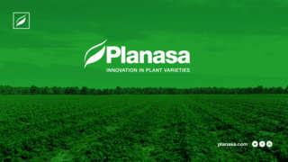 Job offers, jobs at SC PLANASA AGROJOB SRL