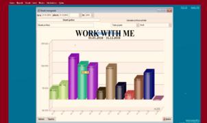 Locuri de munca la Expert contabil Gaspar Szabo Edit