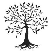 Locuri de munca la IRON TREE CONSTRUCT SRL
