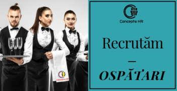 Job offers, jobs at Concepta HR