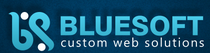 Stellenangebote, Stellen bei Blue Soft